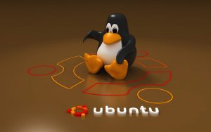 Come installare Ubuntu da PC