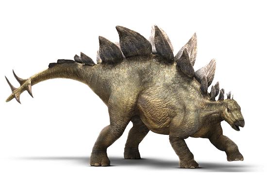 Nomi dinosauri Stegosauro