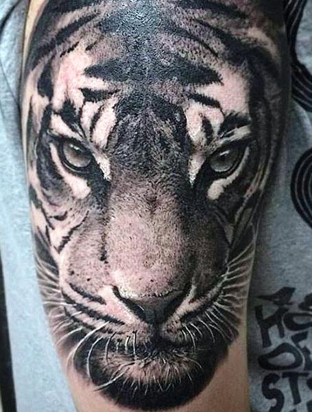 Tatuaggio tattoo tigre nera