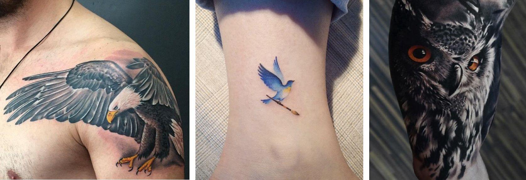 Tatuaggio animali volatili