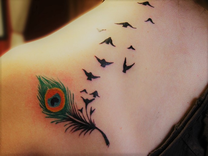 Tatuaggio piuma tattoo pavone