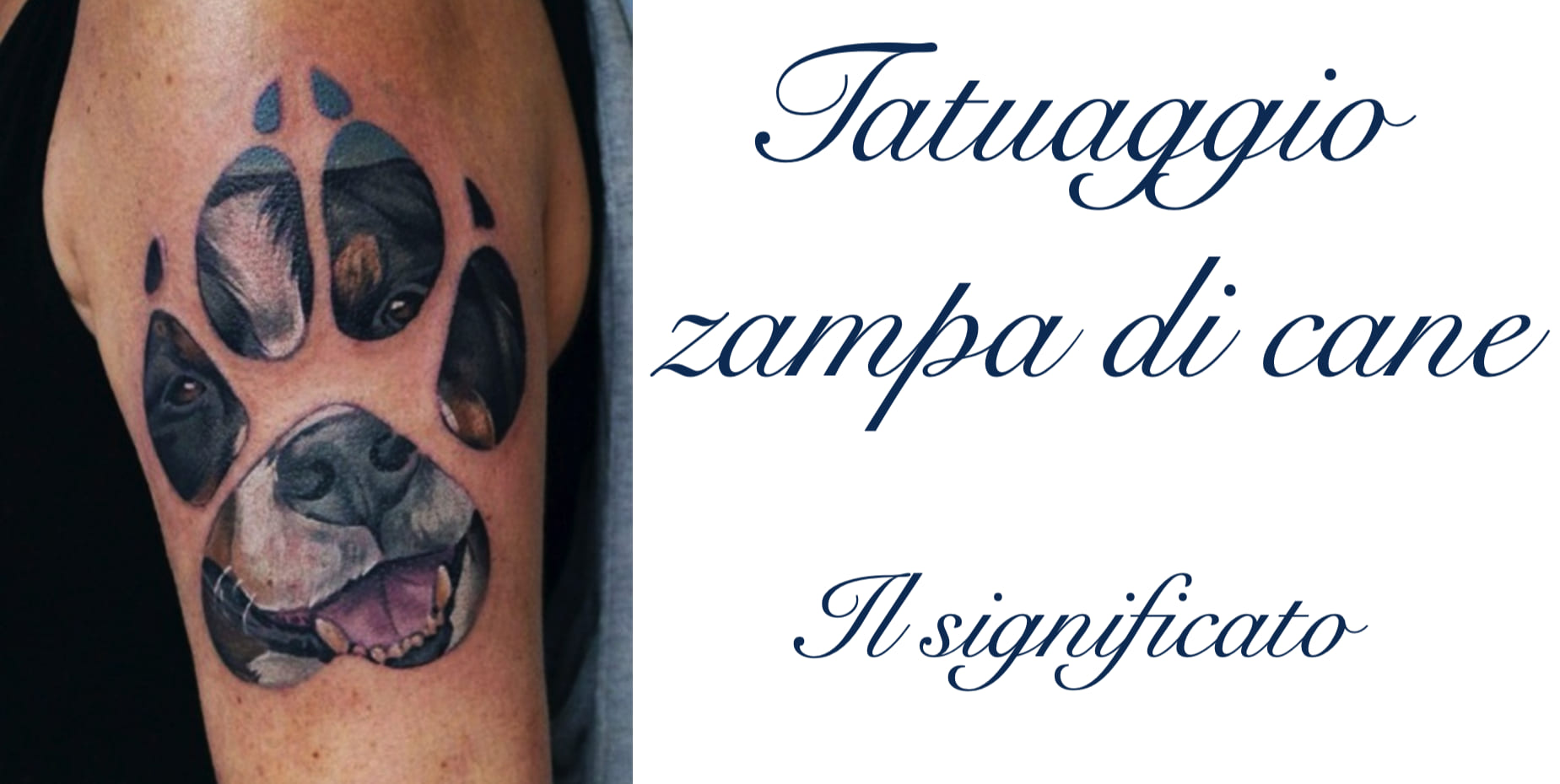 Tattoo Tatuaggio Zampa Cane Significato