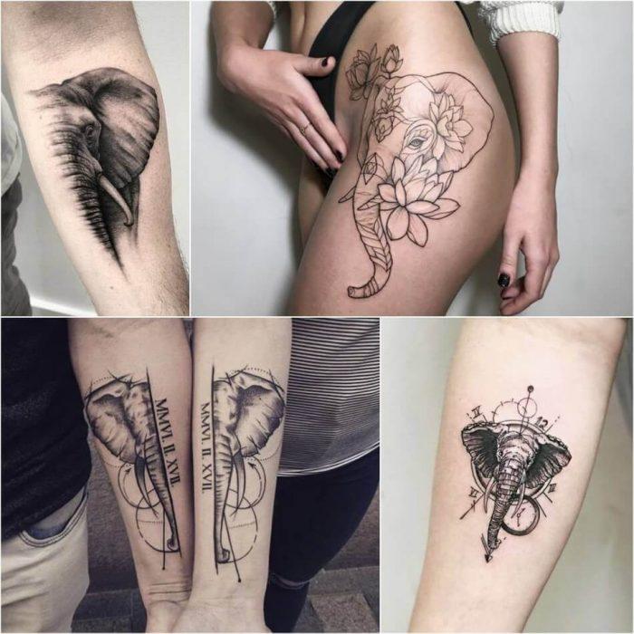 Tatuaggio Tattoo Elefante idee