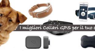 Migliori collari GPS per cani