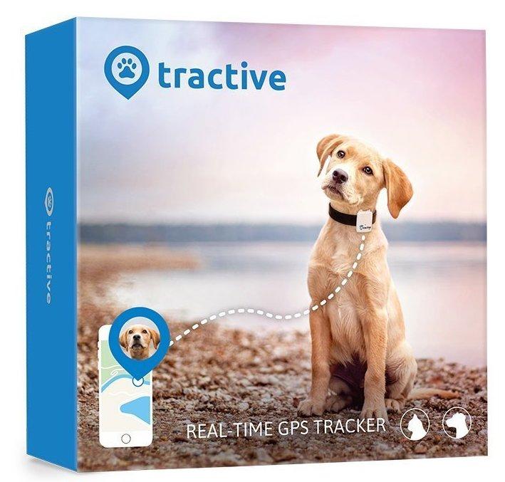Tractive collare GPS cane prodotto