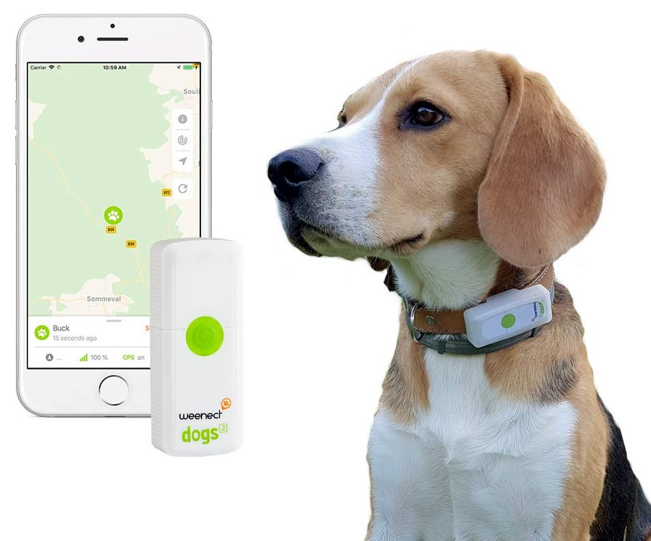 Weenect Dogs collare GPS cane prodotto